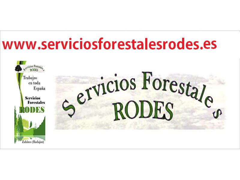 RODES SERVICIOS FORESTALES EXTREMADURA S.L.